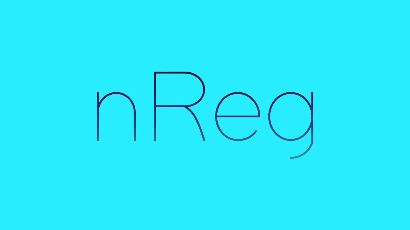 Logo for the Nreg.com domain name