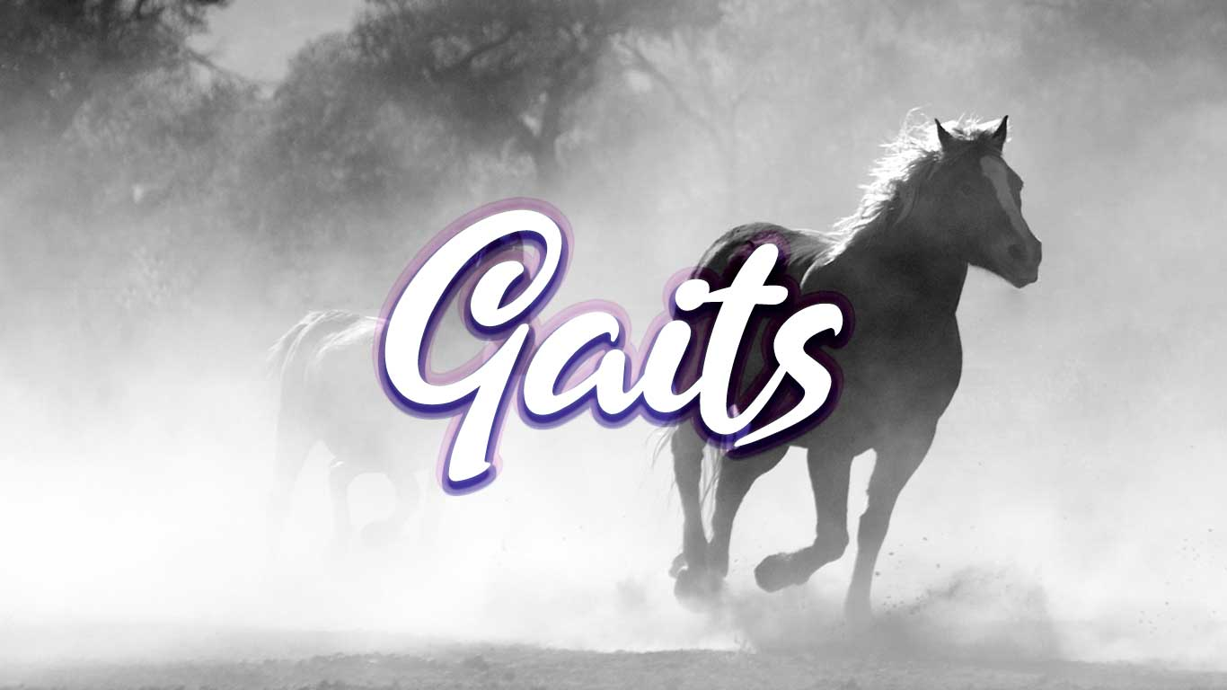 Logo for the Gaits.com domain name