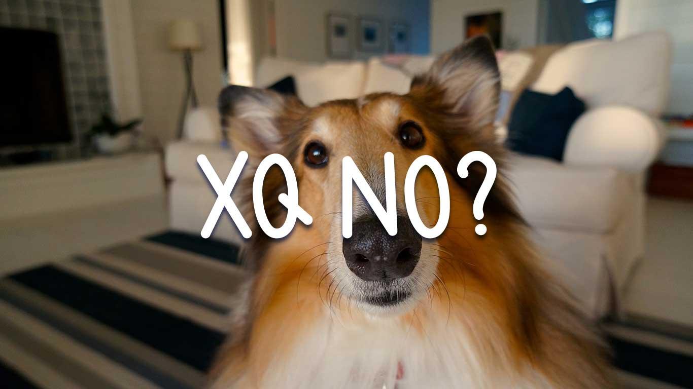 Logo for the Xqno.com domain name